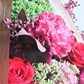 パリの花コース